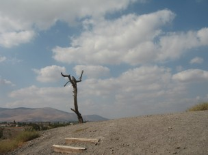 7 Beit Shean national park (8)